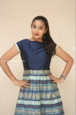 Bhanu Sri at EMI Movie First Look Launch Event (7)