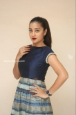 Bhanu Sri at EMI Movie First Look Launch Event (8)