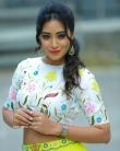 Bhanu shree Instagram Photos (7)