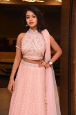 Bhavya Sri at pandu gadi photo studio movie audio launch (10)