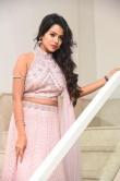Bhavya Sri at pandu gadi photo studio movie audio launch (18)