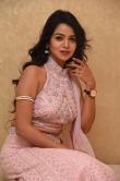 Bhavya Sri at pandu gadi photo studio movie audio launch (21)