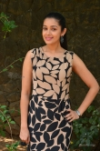 chaya-singh-at-power-paandi-movie-press-meet-photos-74156