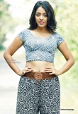 deviyani-sharma-latest-photo-shoot-stills-24987