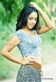 deviyani-sharma-latest-photo-shoot-stills-48402