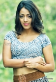 deviyani-sharma-latest-photo-shoot-stills-66737