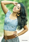 deviyani-sharma-latest-photo-shoot-stills-79698