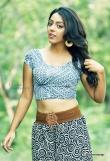 deviyani-sharma-latest-photo-shoot-stills-92501