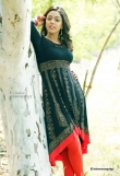 deviyani-sharma-new-photo-shoot-stills-43987