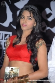 actress-dhansika-2011-photos-147059