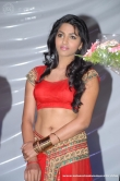 actress-dhansika-2011-photos-189343