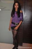 actress-dhansika-2011-photos-236031