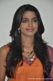 actress-dhansika-2011-photos-447043