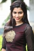 sai dhansika stills (31)