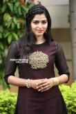 sai dhansika stills (34)