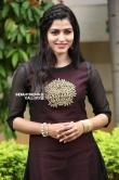 sai dhansika stills (35)