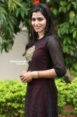 sai dhansika stills (38)