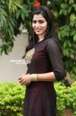 sai dhansika stills (39)