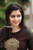 sai dhansika stills (54)