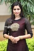 sai dhansika stills (64)