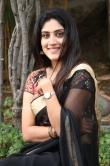 Dhanya Balakrishna in black saree (16)