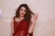 Diksha Panth at operation 2019 pre release (27)