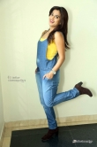 dimple-chopade-at-krishnashtami-movie-success-meet-233090