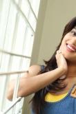 dimple-chopade-at-krishnashtami-movie-success-meet-267638