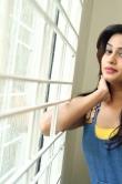 dimple-chopade-at-krishnashtami-movie-success-meet-284157