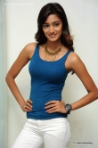 erica-fernandes-at-galipatam-date-press-meet-10412
