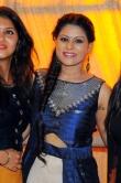 gayathri-suresh-at-dhyan-sreenivasan-wedding-reception-583