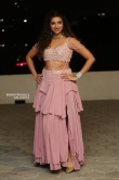 hamsa nandini at bang bang new year event (14)