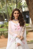Hansika Motwani latest photos 2019 (11)