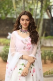 Hansika Motwani latest photos 2019 (5)
