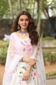 Hansika Motwani latest photos 2019 (8)