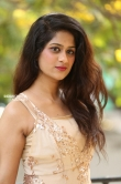 Harini Reddy photos at gang leader movie opening (7)