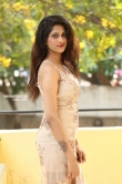 Harini Reddy photos at gang leader movie opening (8)