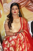 Iniya at Mamangam Movie Press Meet