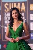 Shanvi Srivatsava at SIIMA Awards 2018 (1)