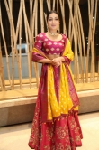 Catherine Tresa at World Famous Lover Pre Release Event (6)