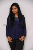 kavitha-at-srinivasa-kalyana-movie-press-meet-photos-24283