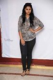 kavitha-at-srinivasa-kalyana-movie-press-meet-photos-35663