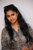 kavitha-at-srinivasa-kalyana-movie-press-meet-photos-59603