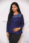 kavitha-at-srinivasa-kalyana-movie-press-meet-photos-63532