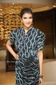 Lakshmi Manchu at Madha movie pre release event(6)