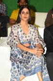 Lavanya Tripathi at Arjun Suravaram Movie Pre Release Event (13)