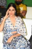 Lavanya Tripathi at Arjun Suravaram Movie Pre Release Event (14)