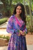 Lavanya Tripathi at Arjun Suravaram Success Meet (10)