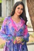 Lavanya Tripathi at Arjun Suravaram Success Meet (12)