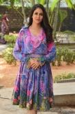 Lavanya Tripathi at Arjun Suravaram Success Meet (5)